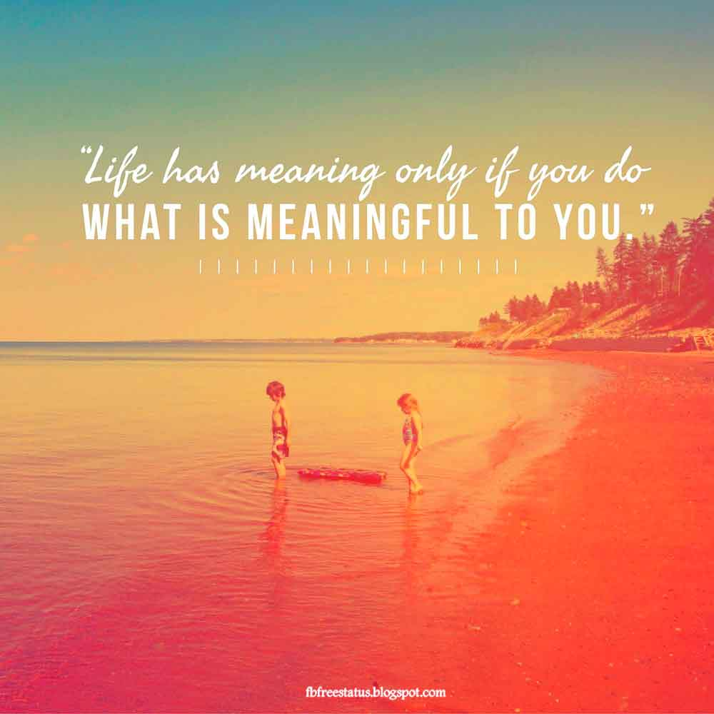 Life has meaning only if you do. what  is meaningful to you.