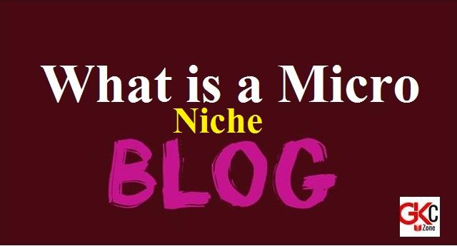 Micro Niche Blog
