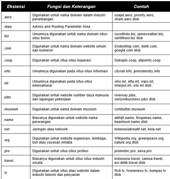tabel jenis domain dan penjelesannya