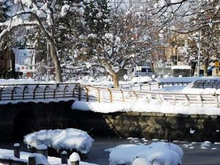 雪の中のサンシュユの木