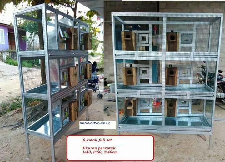 Sangkar Ternak 6 Kotak 3 Tingkat Aksesoris Dan Jasa Pembuatan Aneka Umbaran Dan Sangkar