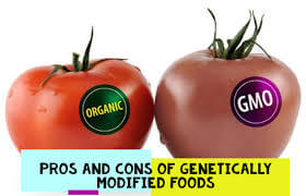 TERMPAPER: GENETICALLY ENGINEERED FOODS: PROS AND CONS