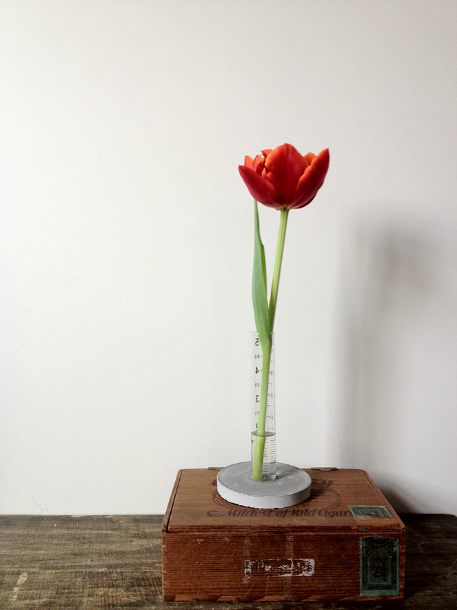 A Daily Something Diy Concrete Cylinder Vase