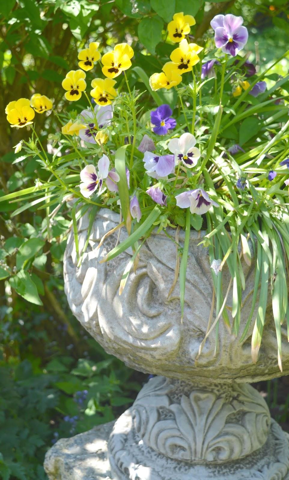 Crook Hall and Gardens, Durham - Secret Garden