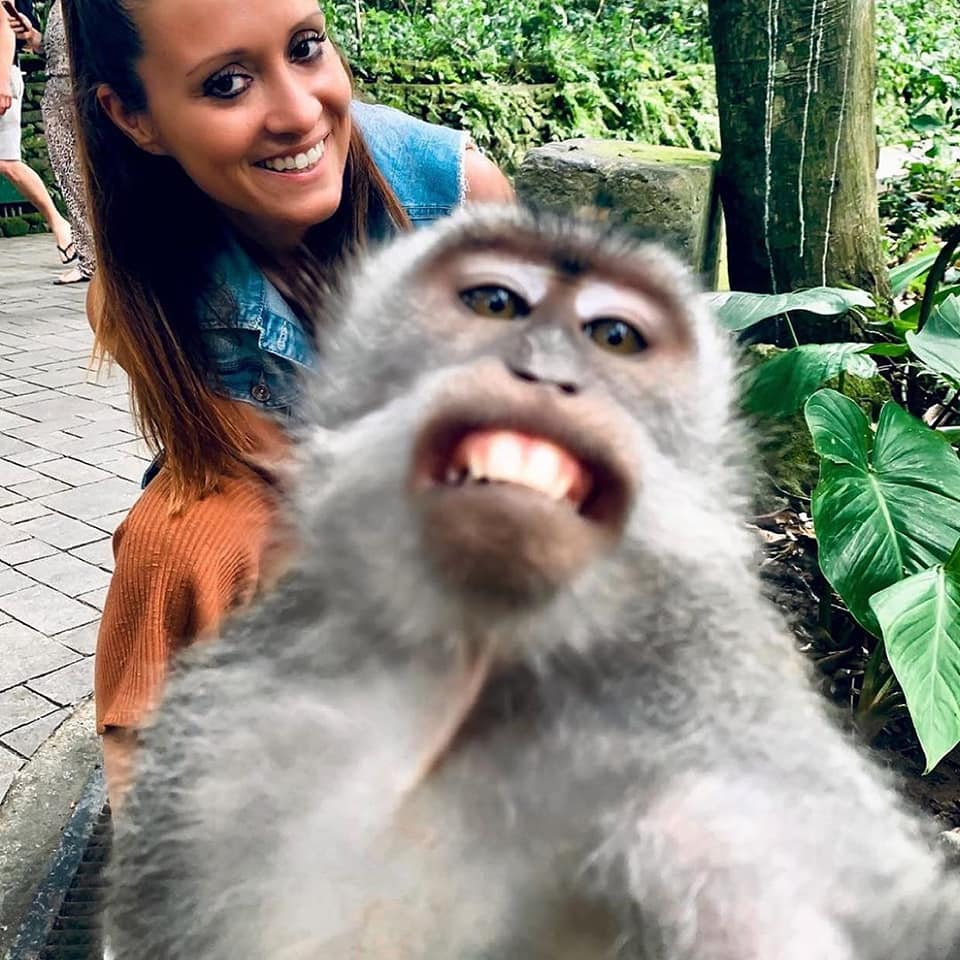 Monkey Selfie Di Monkey Forest Ubud, Bali