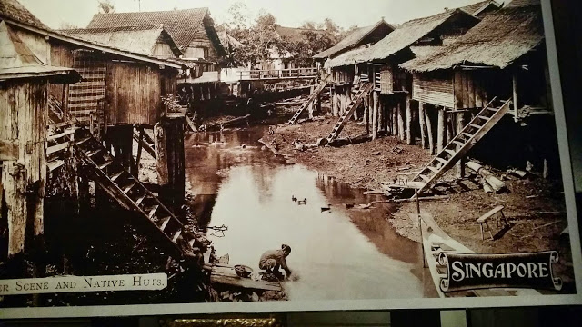 Old Singapura