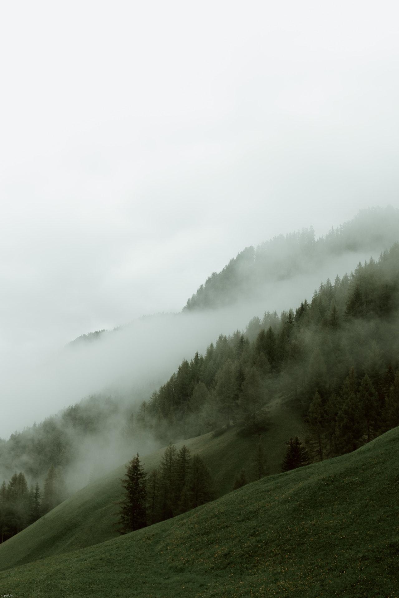 snackenglish, mist, niebla, neblina, humedad, condensacion, hill, mountain