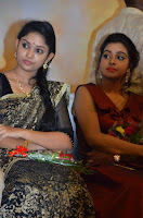 Pichuva Kaththi Tamil Movie Audio Launch Stills  0015.jpg