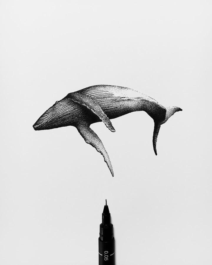 09-Whale-Rostislaw-Tsarenko-www-designstack-co