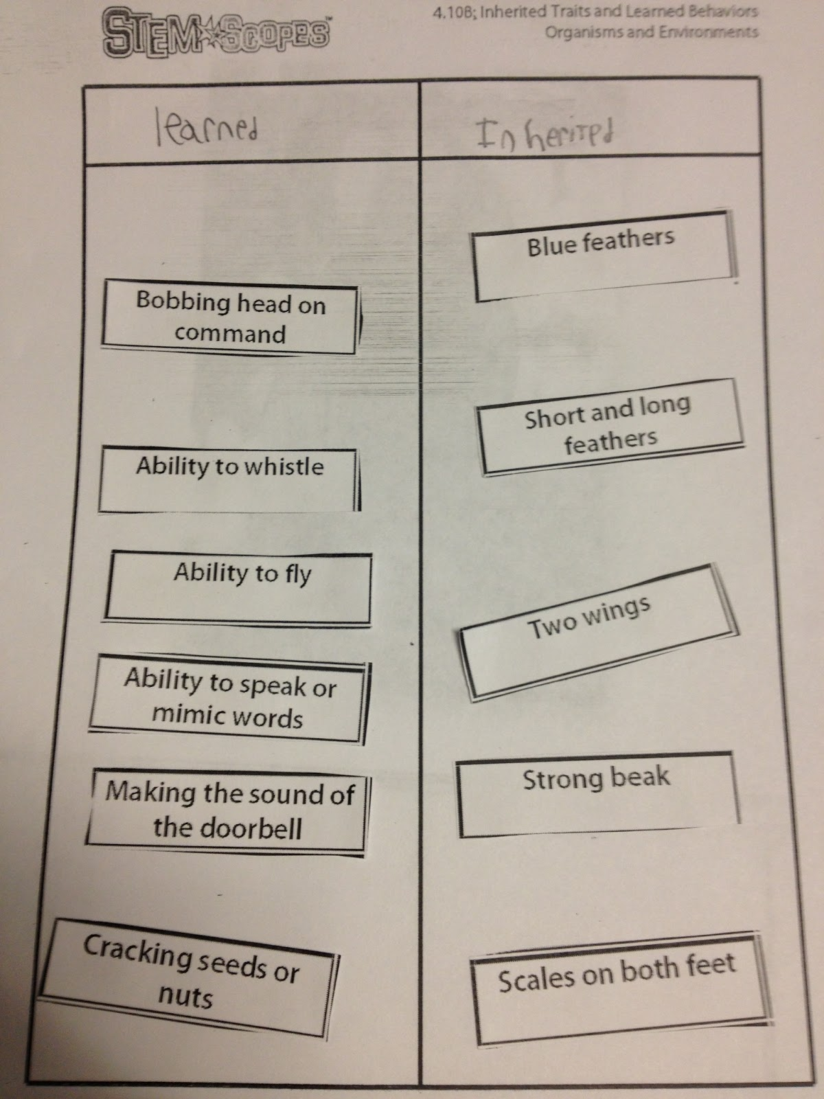32 Inherited Traits Worksheet 5th Grade - Worksheet Resource Plans [ 1600 x 1200 Pixel ]