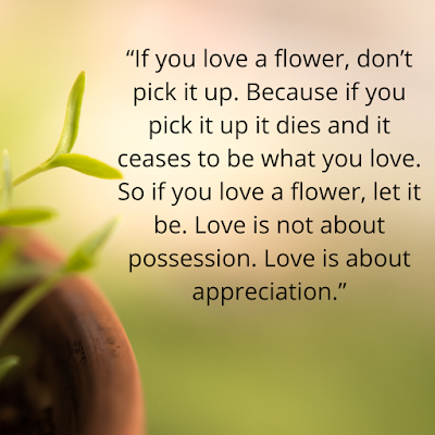 101+BEST  Osho Quotes on Relationship,Success,Fear,simle, love That will change your Life