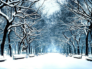 صور شتاء جميلة وتساقط الثلوج