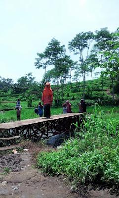 Sumber Maron: Air Terjun Mini di Malang Selatan