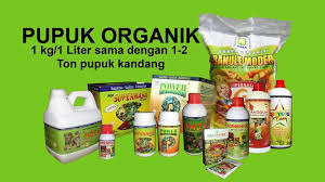 http://www.agenpupuksupernasa.com/2020/01/5-jenis-pupuk-sawit-di-tanah-gambut.html