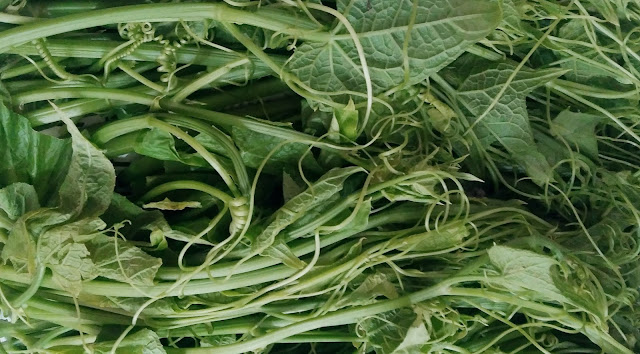 Are Chayote leaves edible?