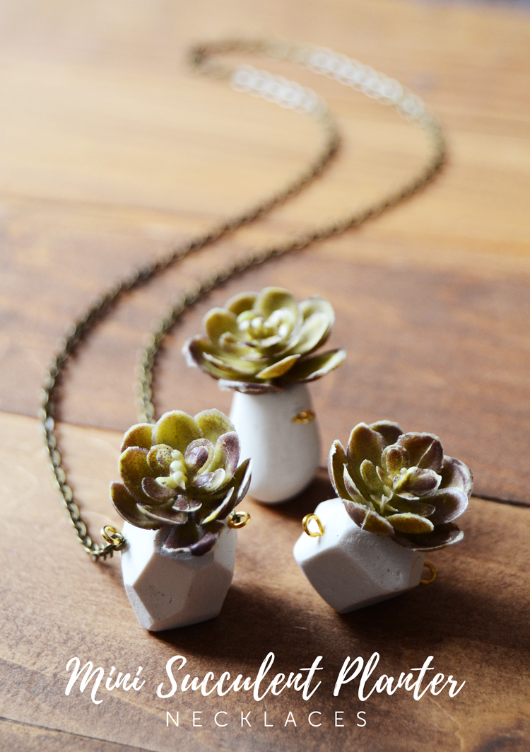 Mini Succulent Planter Necklace DIY
