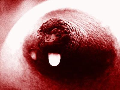 Leite materno contaminado por agrotóxicos