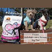 WeRuVa caloric harmony dog food review