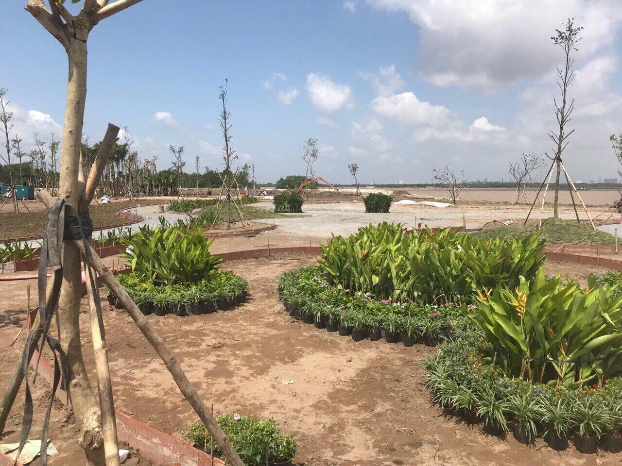 Cập nhật tiến độ dự án King bay Nhơn Trạch 29/08/2018