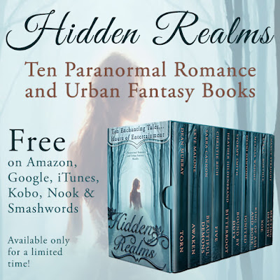Book Blast: Hidden Realms
