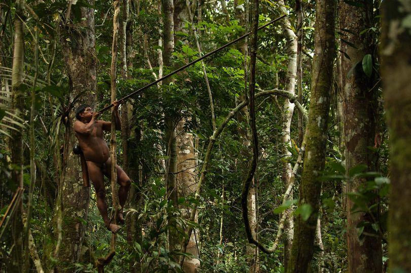 PAY-Monkey-Hunting-Tribe