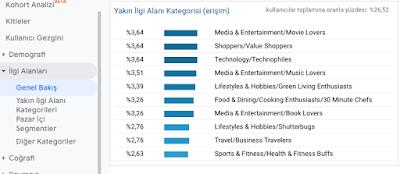 Analytics ekran görüntüsü - İlgi Alanları