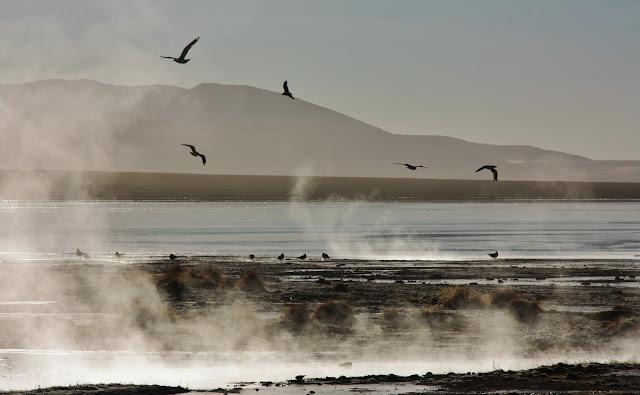 Laguna Polques, uma das lagunas antiplânicas da Bolívia