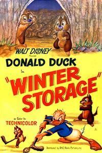 Poster Winter Storage