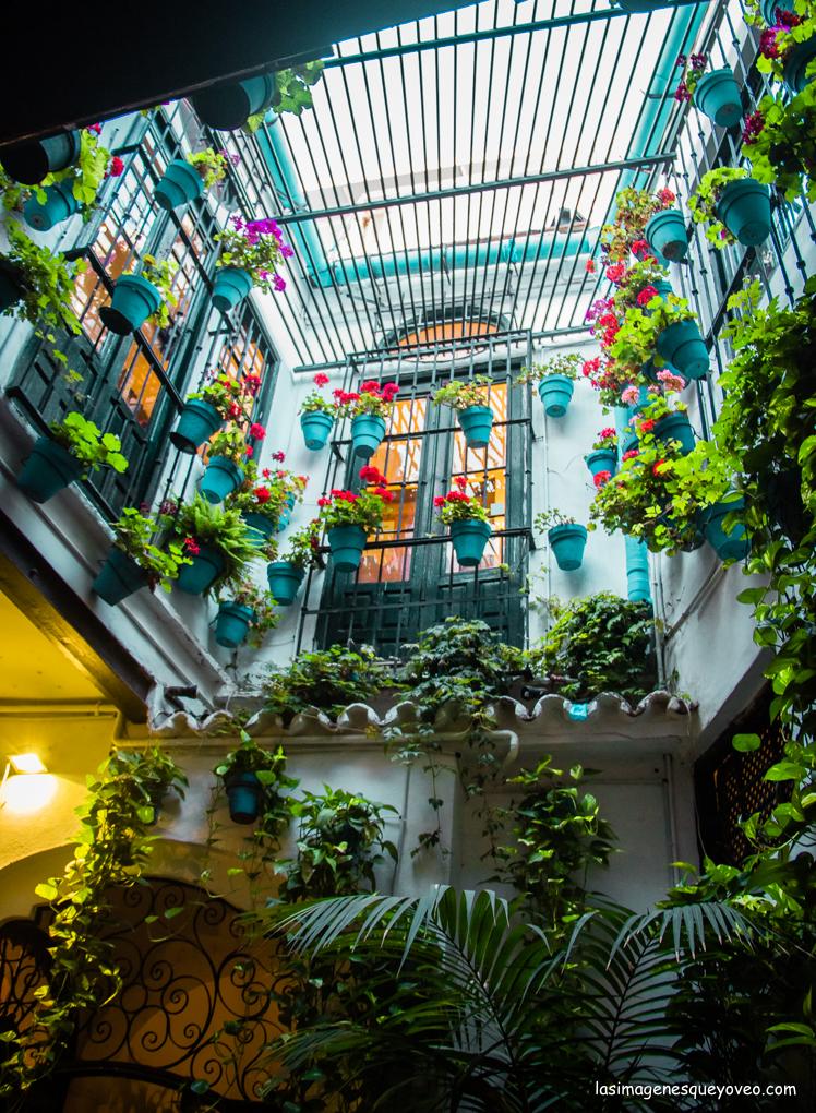 8 imprescindibles que ver en Málaga