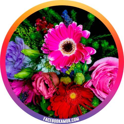 postales de flores para perfil