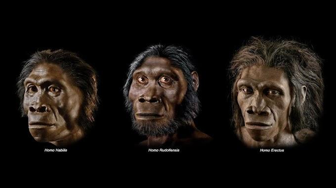 Biz Kimiz ? İnsanlık Tarihi