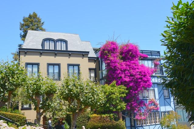Lombardstreet, Sanfranciscotravelguide, Sanfranciscotop5, Sanfranciscodayguide