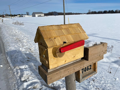 Waiting the the mail on a cold winter's day