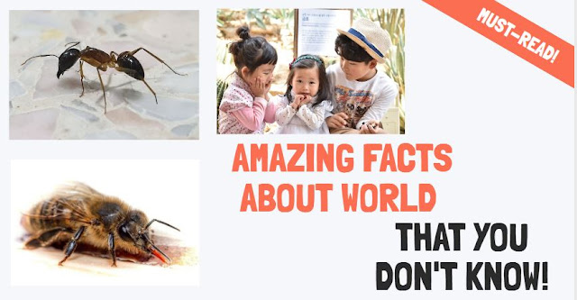 shocking facts about world