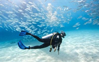 5 Hal yang Tidak Boleh Dilakukan Saat Menyelam