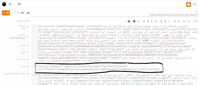 ما معنى قول غوغل ضع هذا الرمز في كل صفحة عبر موقعك في بلوجر