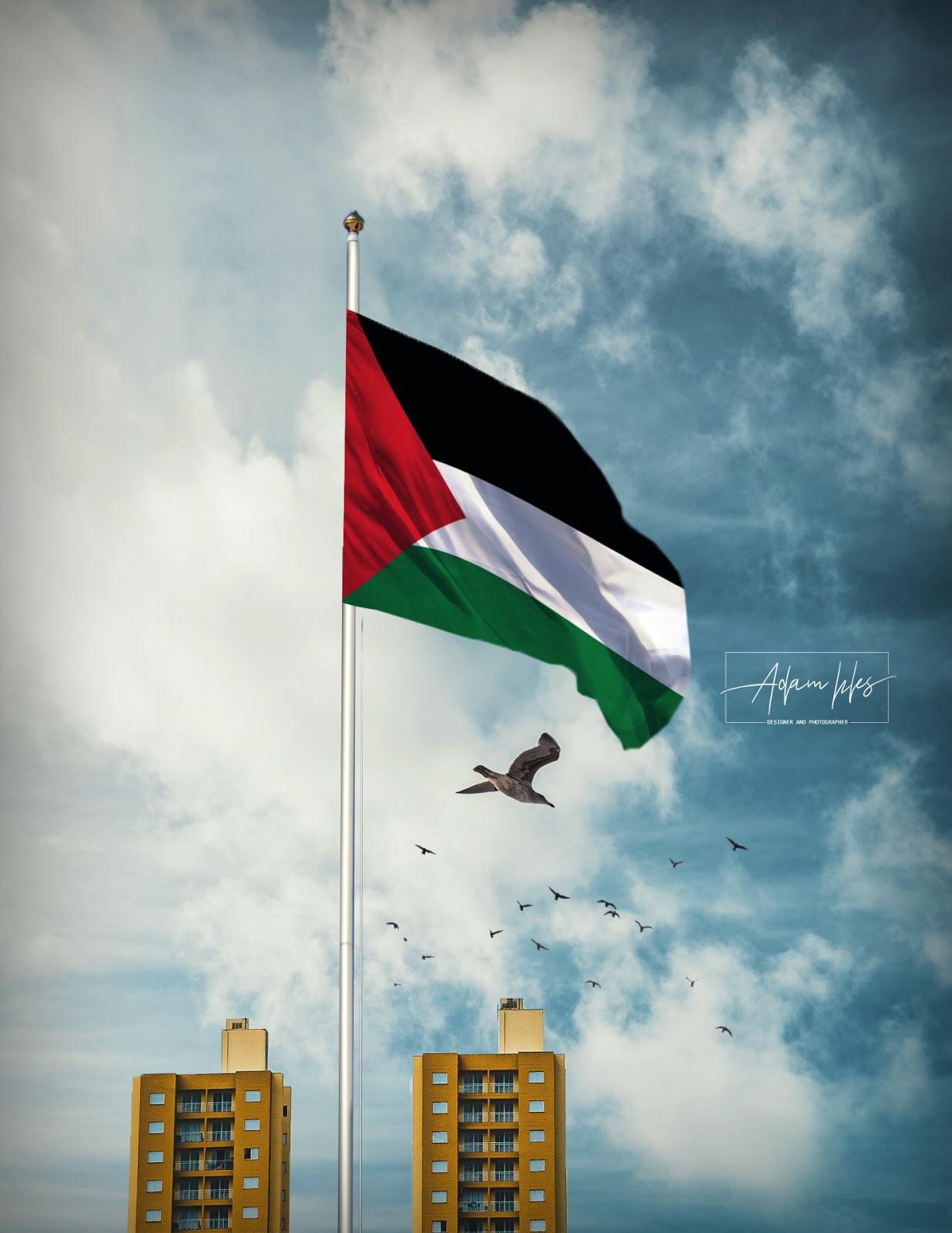 خلفية علم فلسطين