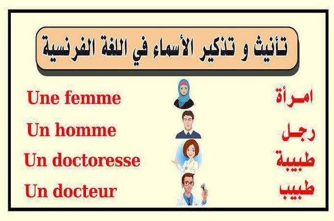"""درس تذكير و تأنيث الأسماء في اللغة الفرنسية : """" le masculin et le féminine des noms """""""
