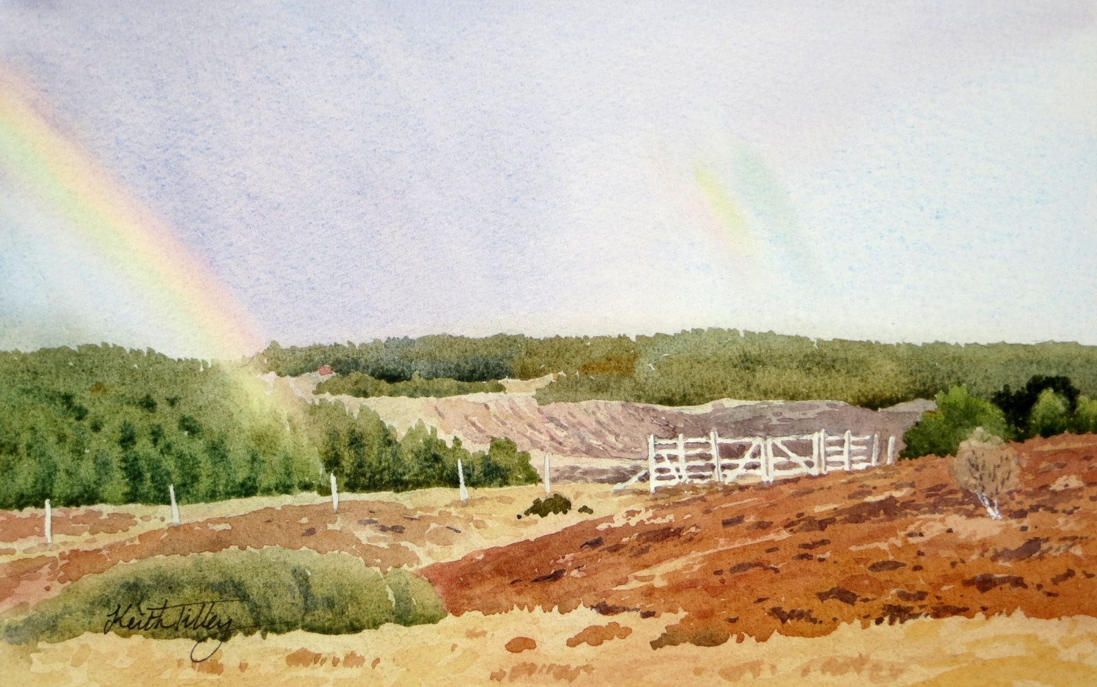 Original watercolour of a forest landscape in Caithness, with a rainbow