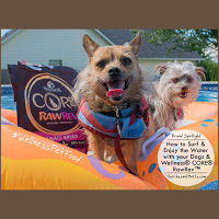 Surfing with your dogs with wellness core rawrev