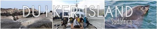 Leones-marinos-Duiker-Island-Sudafrica