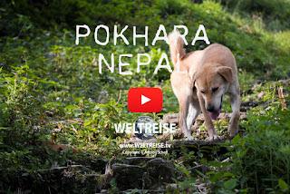 Arkadij WELTREISE Wandern Trekking in Pokhara, Nepal. www.WELTREISE.tv