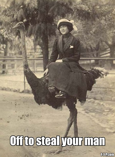 Funny woman riding an ostrich joke picture meme
