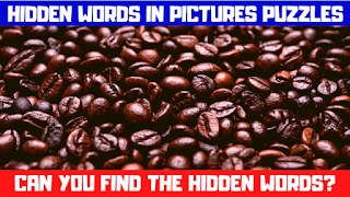 In these picture riddles, your challenge is to find the hidden words in each of the given puzzle picture.