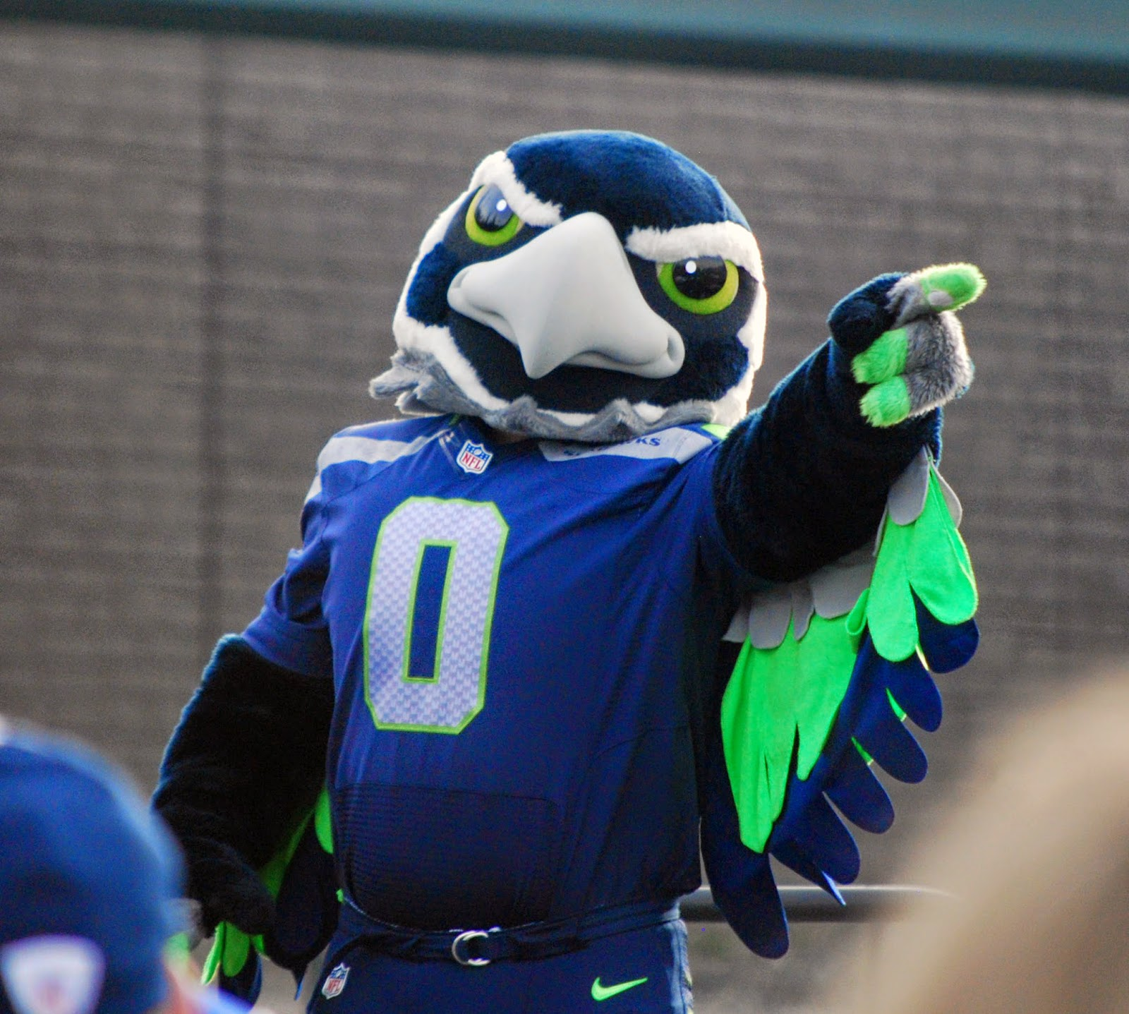 what kind of hawk is the seattle seahawks mascot