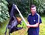 Dev Börtü Böcek Hayvanlar Dev Hayvanlar Videosu