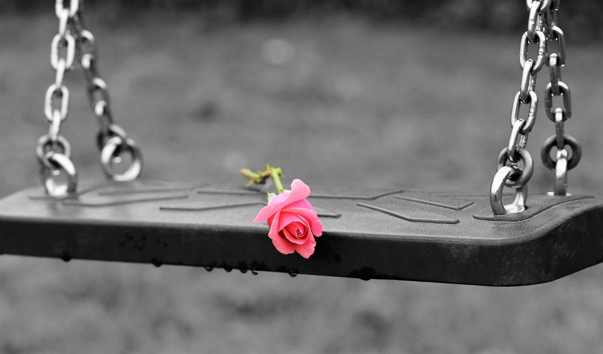 صورة لزهرة أو وردة حمراء متروكة على أرجوحة