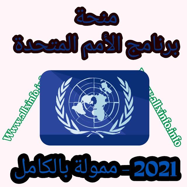 منحة برنامج الأمم المتحدة الإنمائي 2021 - ممولة بالكامل
