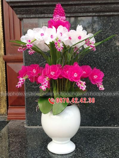 Hoa da pha le o pho Hang Bo