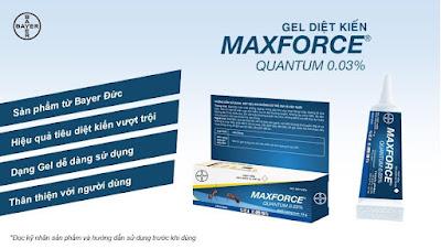 Gel diệt kiến Maxforce Quantum 0.03%